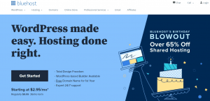 BlueHost Best Web Hosting Sites